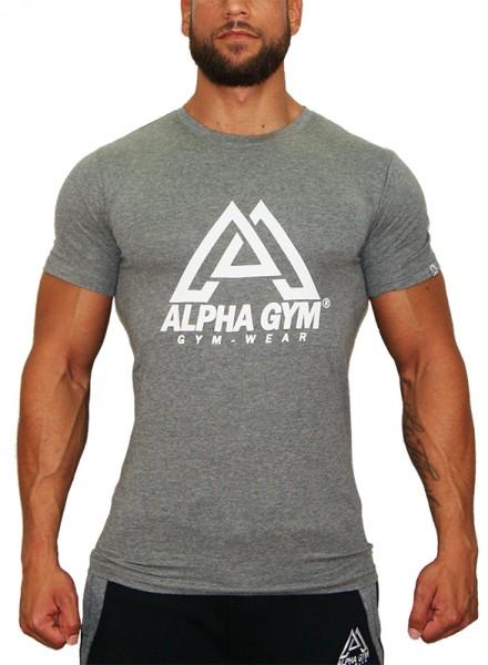 """BIG LOGO"" T-Shirt grey"